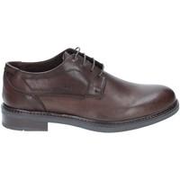 Schuhe Herren Derby-Schuhe Rogers 2027 Braun