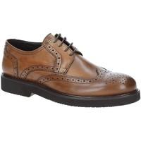 Schuhe Herren Derby-Schuhe Exton 5446 Braun