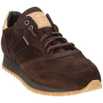 Schuhe Herren Sneaker Low Exton 777 Braun