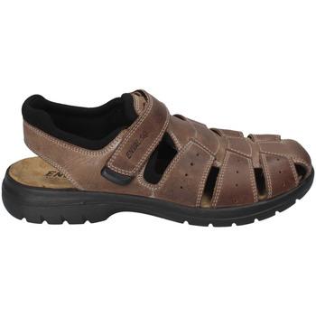 Schuhe Herren Sandalen / Sandaletten Enval 3247522 Braun