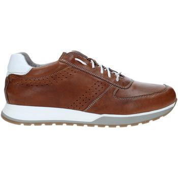 Schuhe Herren Sneaker Low Rogers 5065 Braun
