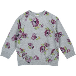 Kleidung Kinder Sweatshirts Chicco 09069347000000 Grau