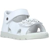 Schuhe Mädchen Sandalen / Sandaletten Falcotto 1500774-01-0N01 Weiß