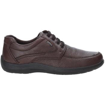 Schuhe Herren Sneaker Low Enval 4233511 Braun