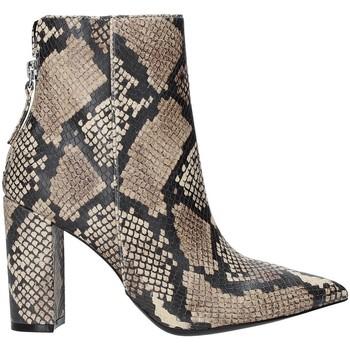 Schuhe Damen Low Boots Steve Madden SMSRENN-TANSNK Braun
