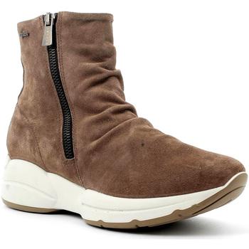 IgI&CO 4148311 Braun - Schuhe Low Boots Damen 4700