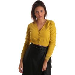 Kleidung Damen Strickjacken Fracomina FR19FM823 Gelb