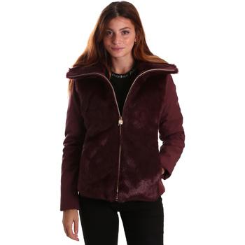 Kleidung Damen Jacken Invicta 4431580/D Rot