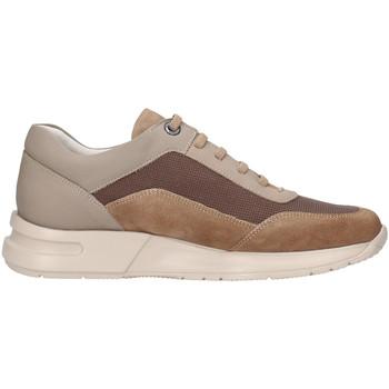 Schuhe Herren Sneaker Low CallagHan 91311 Beige