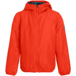 Kleidung Damen Jacken Invicta 4442203/D Orange