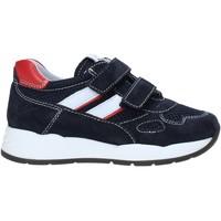 Schuhe Kinder Sneaker Low NeroGiardini E023830M Blau