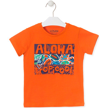 Kleidung Kinder T-Shirts Losan 015-1025AL Orange