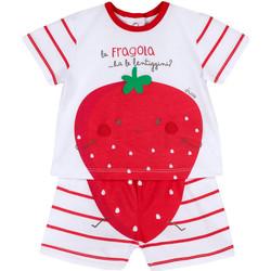 Kleidung Kinder Kleider & Outfits Chicco 09076381000000 Weiß