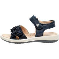 Schuhe Mädchen Sandalen / Sandaletten Naturino 0502724 04 Blau