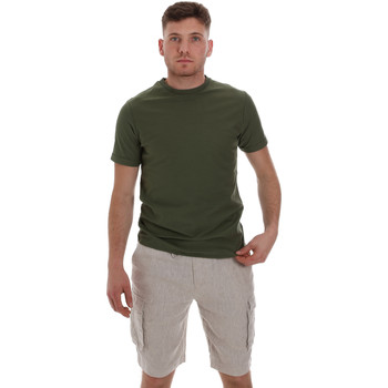 Kleidung Herren T-Shirts Sseinse ME1548SS Grün