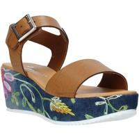 Schuhe Damen Sandalen / Sandaletten Grace Shoes 02 Braun