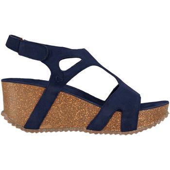 Schuhe Damen Sandalen / Sandaletten Docksteps DSE106243 Blau