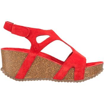 Schuhe Damen Sandalen / Sandaletten Docksteps DSE106246 Rot