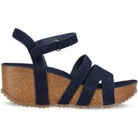 Schuhe Damen Sandalen / Sandaletten Docksteps DSE106445 Blau
