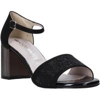 Schuhe Damen Sandalen / Sandaletten Comart 823368 Schwarz