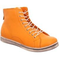 Schuhe Damen Stiefel Andrea Conti Stiefeletten 341500-025 orange