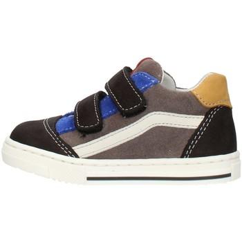Schuhe Jungen Sneaker Low Balocchi 602211 Mehrfarbig