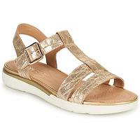 Schuhe Damen Sandalen / Sandaletten Geox D SANDAL HIVER B Gold
