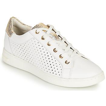 Schuhe Damen Sneaker Low Geox D JAYSEN B Weiss / Gold
