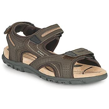 Schuhe Herren Sportliche Sandalen Geox UOMO SANDAL STRADA D Braun / Beige