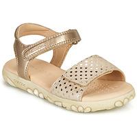 Schuhe Mädchen Sandalen / Sandaletten Geox J SANDAL HAITI GIRL Beige / Gold