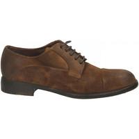 Schuhe Herren Derby-Schuhe Brecos CAMOSCIO sigaro