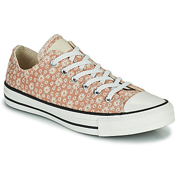 Schuhe Damen Sneaker Low Converse CHUCK TAYLOR ALL STAR CANVAS BRODERIE OX Beige