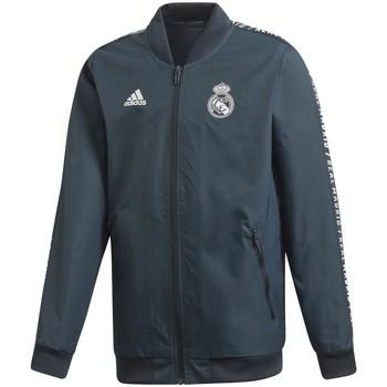 Kleidung Jacken adidas Originals  Grau