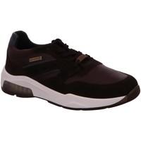 Schuhe Herren Derby-Schuhe & Richelieu Ara Schnuerschuhe 11-36022-07 braun