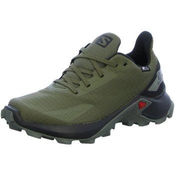 Schuhe Jungen Laufschuhe Salomon Low Schuhe ALPHACROSS BLAST CSWP J L41123000 000000 grün