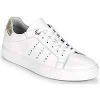 Schuhe Damen Sneaker Low Myma PEGGUI Weiss / Gold