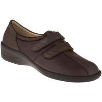 Schuhe Damen Derby-Schuhe Natural Feet Kletter Tessin Farbe: braun braun