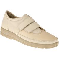 Schuhe Damen Derby-Schuhe Natural Feet Kletter Stockholm Farbe: beige beige