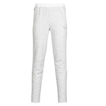 Kleidung Herren Jogginghosen Puma Evostripe pant Grau