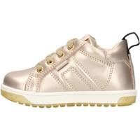 Schuhe Jungen Sneaker Low Balducci - Polacchino oro CSP4105 ORO
