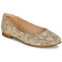 Schuhe Damen Ballerinas Clarks GRACE PIPER Beige
