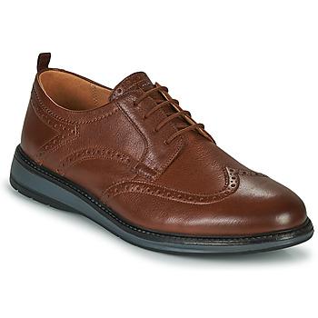 Schuhe Herren Derby-Schuhe Clarks CHANTRY WING Braun