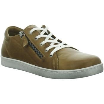 Schuhe Damen Derby-Schuhe Andrea Conti Schnuerschuhe 0020027, 0020027 201 braun