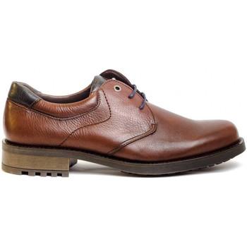 Schuhe Herren Derby-Schuhe & Richelieu Kennebec 8158 Braun