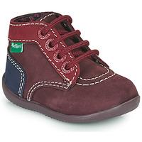 Schuhe Mädchen Boots Kickers BONBON-2 Violett / Rot / Marine