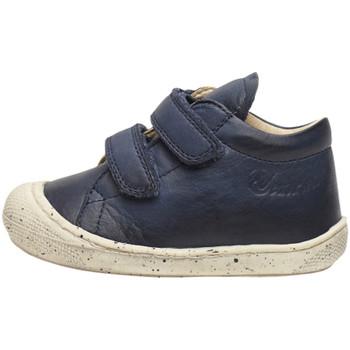 Schuhe Jungen Sneaker High Naturino - Polacchino blu COCOON VL-0C02 BLU