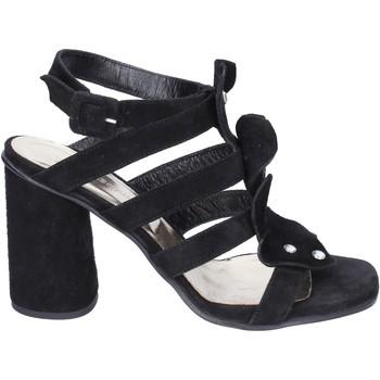 Schuhe Damen Sandalen / Sandaletten Sergio Cimadamore Sandalen Wildleder Schwarz