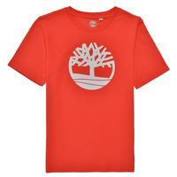 Kleidung Jungen T-Shirts Timberland LOLLA Rot