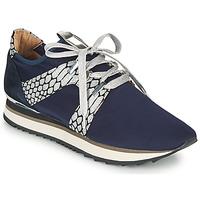 Schuhe Damen Sneaker Low Adige XAN V4 KOI SILVER Blau