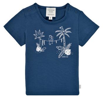 Kleidung Jungen T-Shirts Carrément Beau Y95274-827 Marine